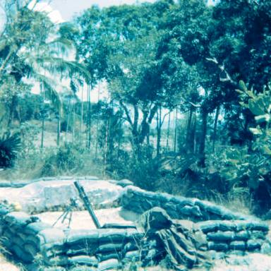 "W3 mortar section in location - no other fire support was available except 8"" howitzers from the mainland    [Binning]"